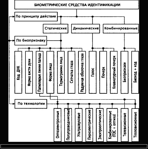 Схема классификатор биометрических средств идентификации